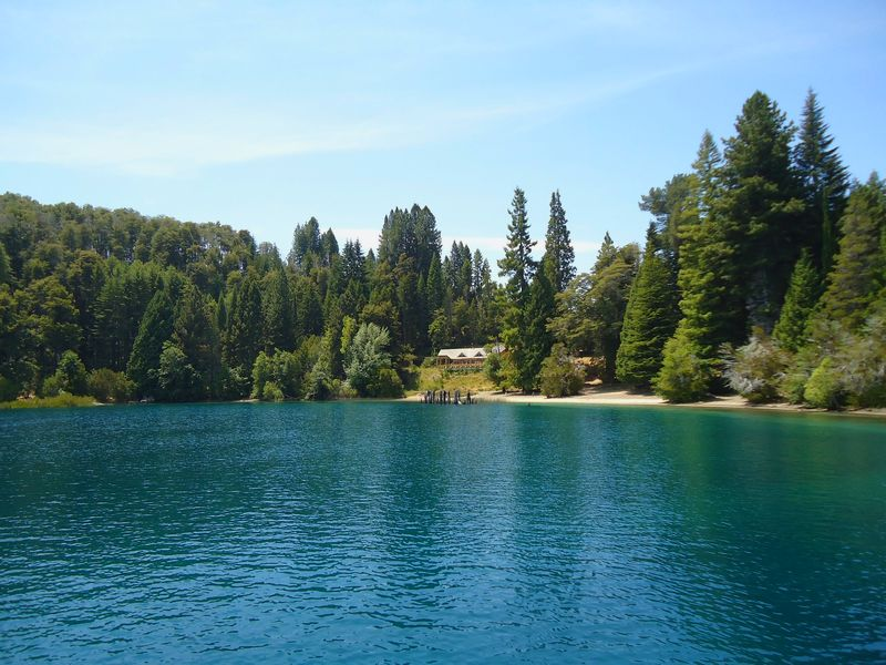 lake and forest in bariloche
